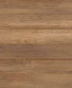 Labrador Oak #1